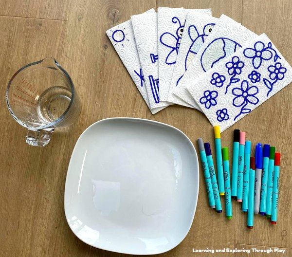 Kitchen Roll Magic Drawing Science