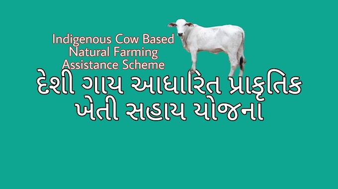Atma's Natural Agriculture Schemes. Indigenous Cow Based Natural Farming Assistance Scheme