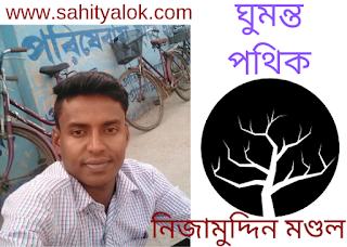 ঘুমন্ত পথিক  //  নিজামুদ্দিন মণ্ডল