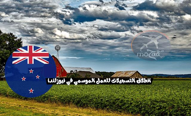 انطلاق التسجيلات للحصول على تأشيرة العمل الموسمية في نيوزيلندا