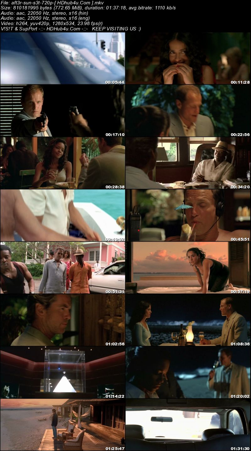 After The Sunset 2004 Hindi Dual Audio 720p BluRay 750mb Download