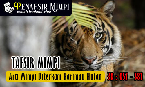 Tafsir Mimpi Diterkam Harimau Hutan