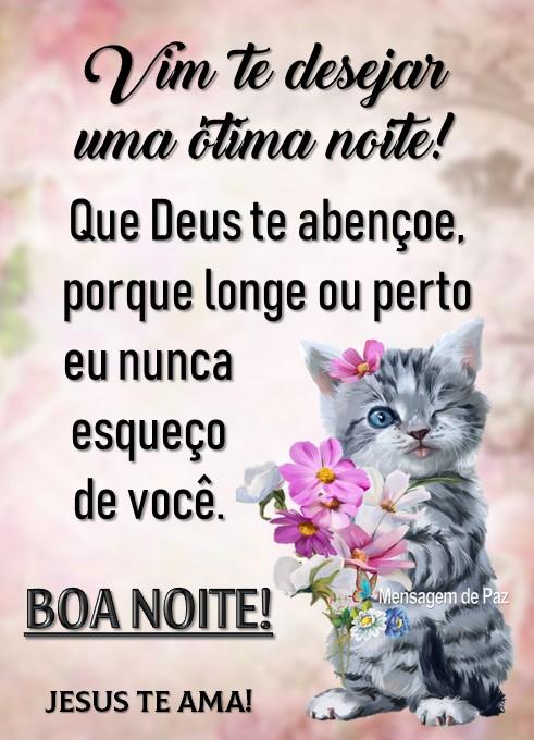 Vim te desejar  uma ótima noite!  Que Deus te abençoe,  porque longe ou perto  eu nunca esqueço de você.  Boa Noite!  Jesus te Ama!