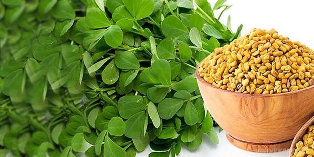 çemen otu tohumunun saça yararları - www.kahvekafe.net