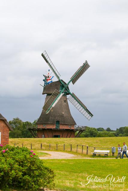 Freilichtmuseum Molfsee Norddeutschland Windmühle