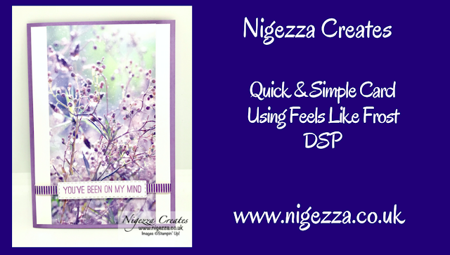 Nigezza Creates with Stampin Up Feels Like Frost