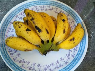 Sun cooked lunch - Banana