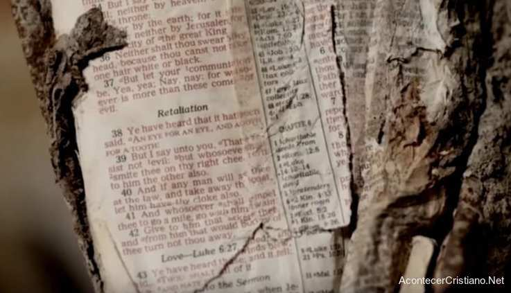 Página de la Biblia encontrada en restos de Torres Gemelas