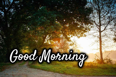Images of Good Morning Download