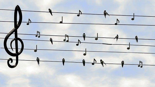 kecepatan suara, bunyi, jarak, medium, sarana perantara, kini saya ngerti