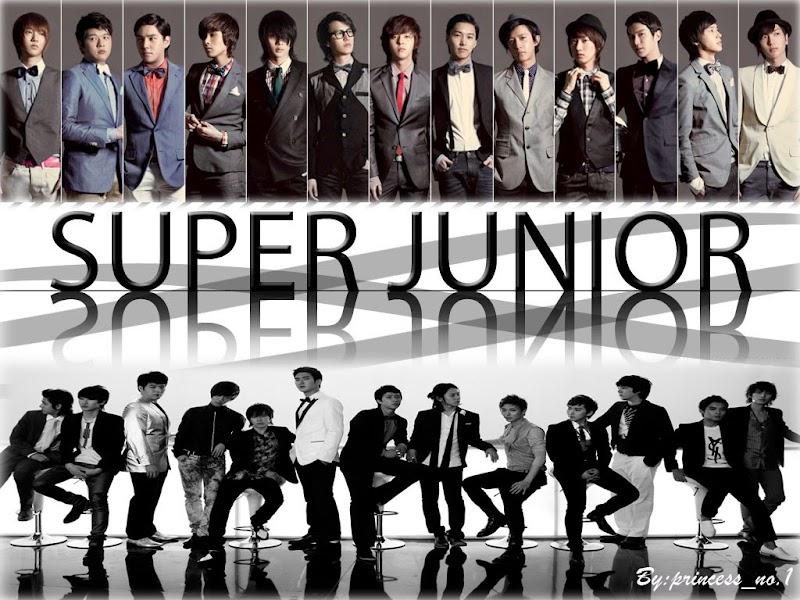 Arguing Over Nothing, Super Junior  13 or 15 ?