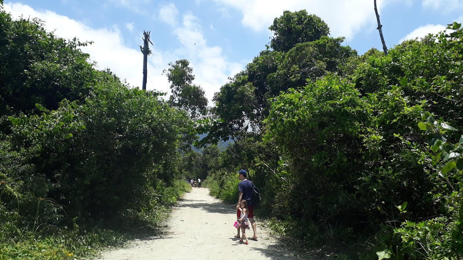 Estradinha de terra, trajeto que se faz a pé até a praia da Fazenda.