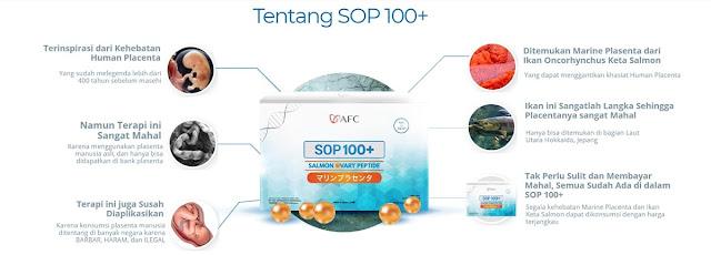 Tentang SOP 100+