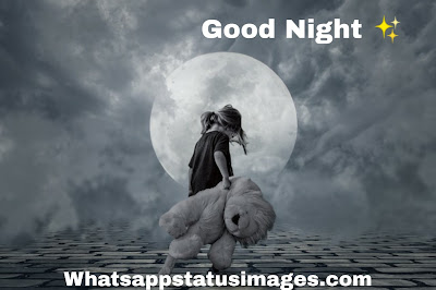 Good Night Messages for brother in English