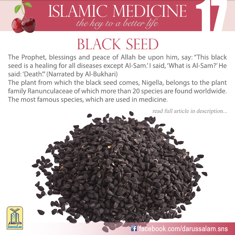 Black Seed Oil Benefits In Islam {Nhs Alumni}