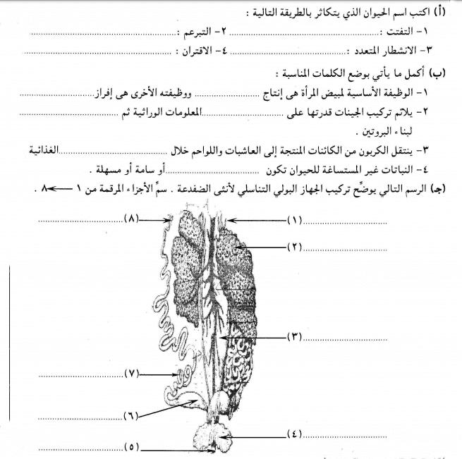 امتحانات الشهادة السودانية بنك الاسئلة مادة الاحياء
