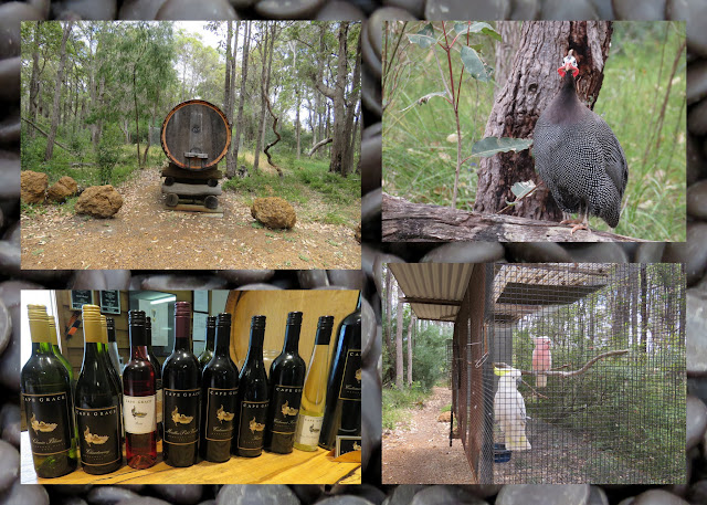 Road Trip to Margaret River in Western Australia - Wine and Birds at Cape Grace Winery