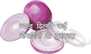 प्याज से कई समस्याओं का समाधान in hindi, Onion solve many problems in hindi, प्याज बनाये अंदर से मजबूत in hindi, Onions makes strong from inside in hindi, प्याज नाक-आंख-कान के लिए in hindi, Onion for nose-eye-ear in hindi, pyaz ke ras ke fayde in hindi, Onion juice health benefits in hindi, Onion For Hair Growth In Hindi in hindi, pyaj se upchar in hindi, pyaj se gharelu nuskhe in hindi, pyaj ke gharelu upay in hindi, Onion prevents cancer in hindi, Onion for eyes in hindi, Onion beneficial in nose disease in hindi, Onion for ear in hindi, Onion for diabetes in hindi, For onion platelets in hindi, Onions for strong bones in hindi, For onion inflammation and allergy in hindi, Onion strong resistance system in hindi, Onion strengthens sexual stamina in hindi, For onion fever-cough in hindi, Onion beneficial in menopause in hindi, For onion trachea in hindi, Onion for good sleep in hindi, Onions for strong brains in hindi, Onion kidney stones in hindi, Onion for UTI in hindi,pyaj dilaye kahi beemariyon se chhutakara in hindi, प्याज दिलाये कई बीमारियों से छुटकारा hindi, Onion will get rid of many diseases in hindi, onion image, onion jpeg, onion jpg,   pyaj in hindi, pyaj ke barein mein in hindi, pyaj  ke fayde in hindi, pyaj ka upyog in hindi, pyaj ka use in hindi, sakshambano in hindi, sakshambano in eglish, sakshambano meaning in hindi, sakshambano ka matlab in hindi, sakshambano photo, sakshambano photo in hindi, sakshambano image in hindi, sakshambano image, sakshambano jpeg, सक्षमबनो इन हिन्दी में in hindi, सब सक्षमबनो हिन्दी में, पहले खुद सक्षमबनो हिन्दी में, एक कदम सक्षमबनो के ओर हिन्दी में, आज से ही सक्षमबनो हिन्दी हिन्दी में, सक्षमबनो के उपाय हिन्दी में, अपनों को भी सक्षमबनो का रास्ता दिखाओं हिन्दी में, सक्षमबनो का ज्ञान पाप्त करों हिन्दी में, aaj hi sakshambano in hindi, abhi se sakshambano in hindi,