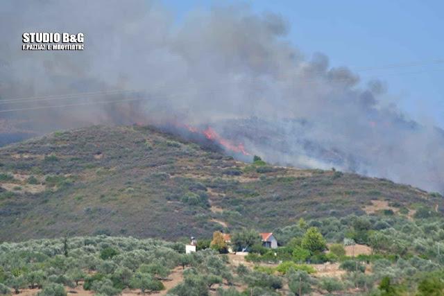 Μεγάλη πυρκαγιά στην Αργολίδα στην περιοχή της Μονής Καρακαλά
