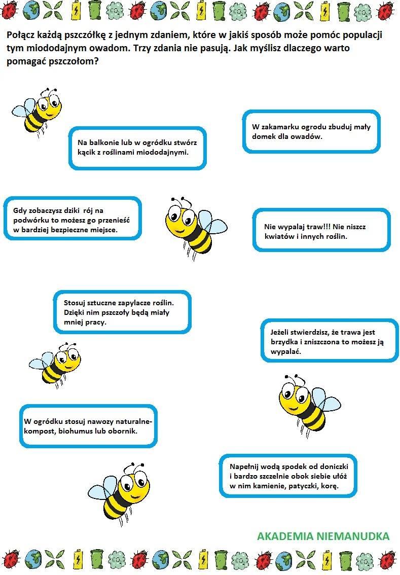 co zrobić dla pszczół, pszczoły