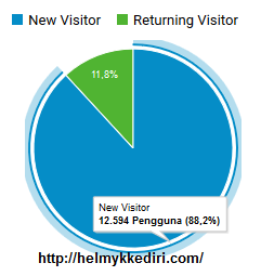 1. Visitor kembali atau return visitor