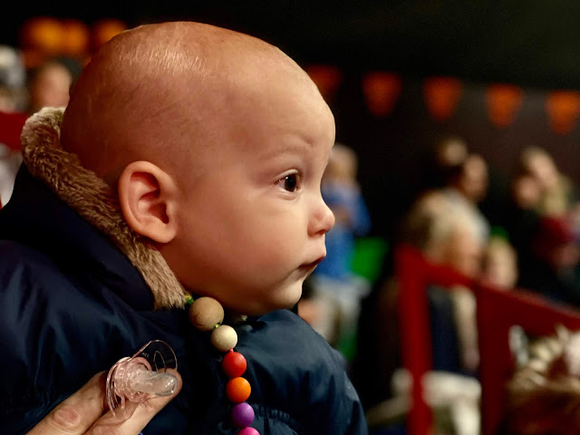 A 9 month old baby staring towards a show