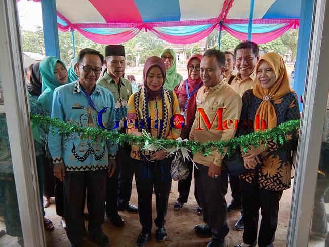 Adi Luhur dan Fajar Indah, Wakili Mesuji Lomba Desa Tingkat Provinsi Lampung