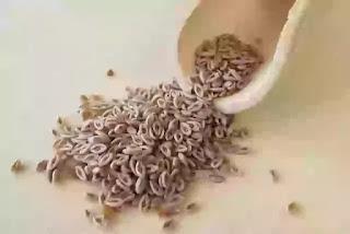 Ispaghula tea