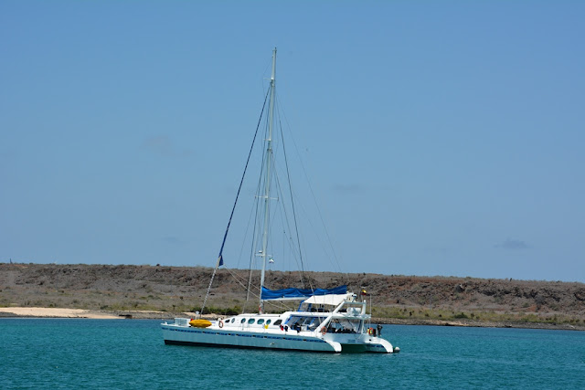 Baltra Airport catamaran