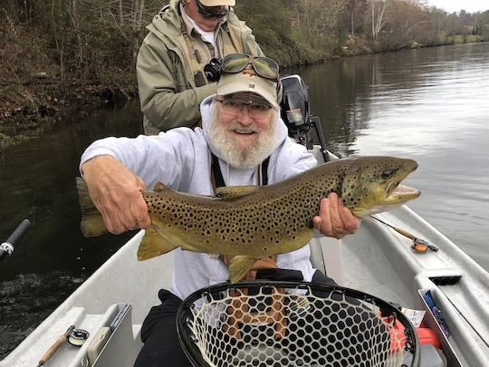 Clinch River Trophy Brown trout