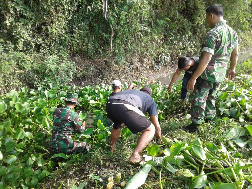 Cegah Banjir, Puluhan Personel TNI Bersihkan Eceng Gondok di Saluran Sungai Mlaten
