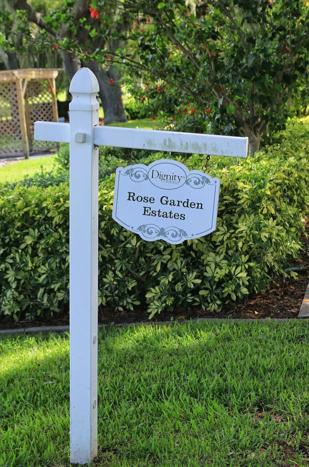 Pinellas County Parks : Sturgeon Memorial Rose Garden, Secluded AARS Garden  In Largo