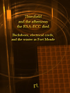Thiesfield and the afternoon the RSA-ECC died Cover