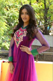 Actress Pooja Jhaveri Latest Stills in Purple Salwar Kameezt at Dwaraka Success Meet  0111.JPG