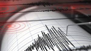 Gempa Hari Ini: M 5,0 Guncang Sumba Ternyata Sudah 244 Kali Susulan