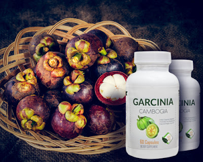 Can You Buy Garcinia Cambogia In Health Food Stores