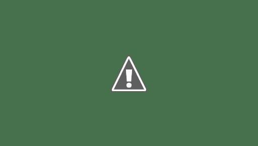 اسعار الذهب الاربعاء 12 أغسطس 2020 سعر الذهب
