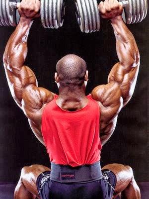 تمارين عضلات الكتف كمال الاجسام