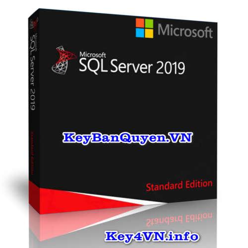 Mua bán key bản quyền SQL Server 2019 Standard 64 Bit.