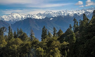 Great Himalyan National Park (Places to visit in Manali)