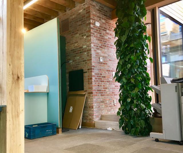 Grote plantenwand voor binnen met groene klimplanten op maat prijzen op aanvraag