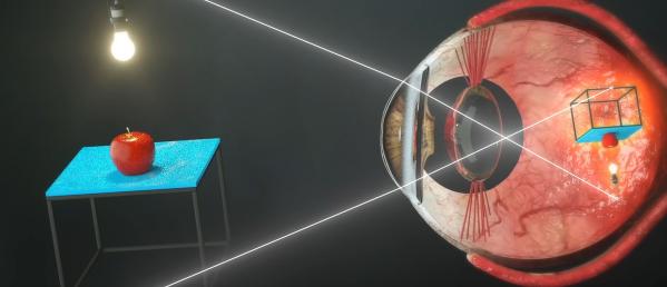 Pembentukan bayangan pada mata