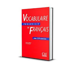 vocabulaire progressif du français avec 250 exercices pdf