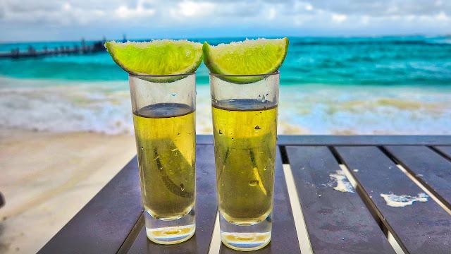 decreto 9.799/19 tequila