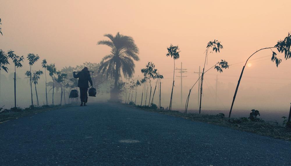 কুয়াশা ঢাকা শীতের সকালের একটি দৃশ্য।