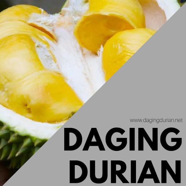tersedia-daging-durian-medan-di-fef