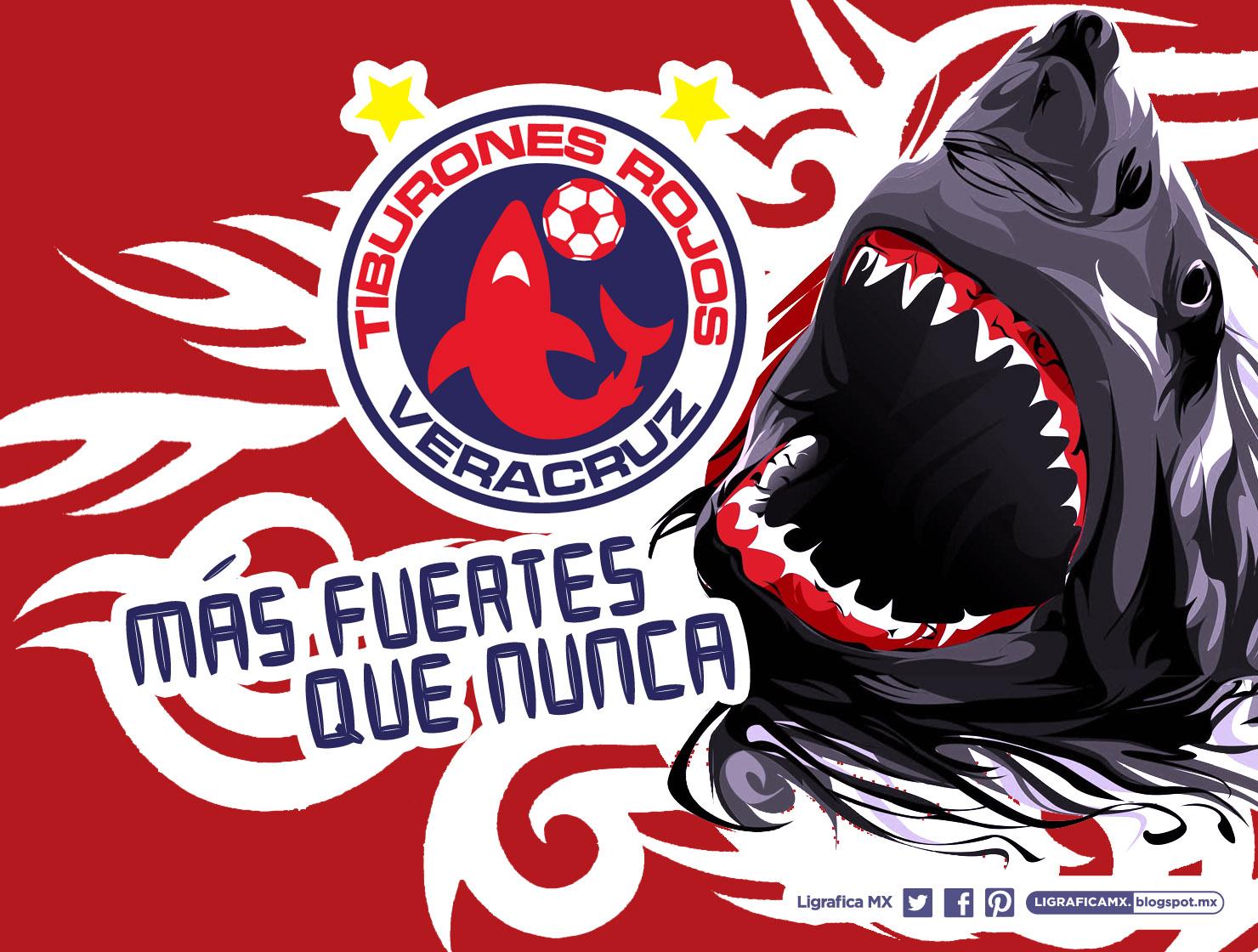 56dfd67f2fc4c Fotos de las porristas de los tiburones rojos