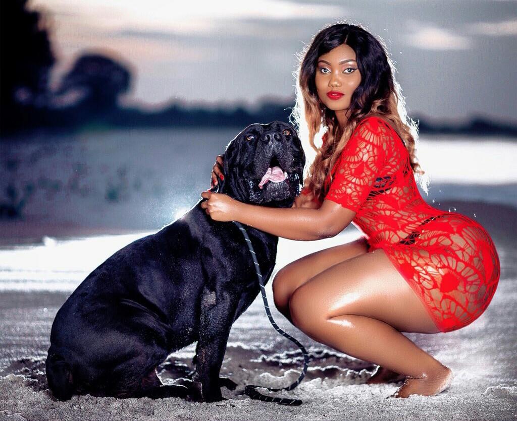Sanchoka: Sanchi World in red with black bull dog