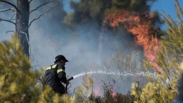 Σε ύφεση η πυρκαγιά στον Δήμο Σαρωνικού - 71 πυρκαγιές σε όλη τη χώρα χθες (βίντεο)