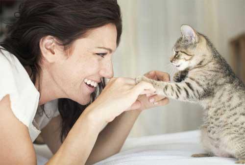 Aneka Ide Bisnis yang Cocok untuk Para Pencinta Binatang